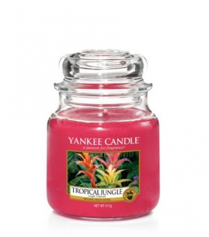 Tropical Jungle - Medium Jar Candle - The Candle Scentre